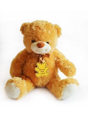 Медведь B21