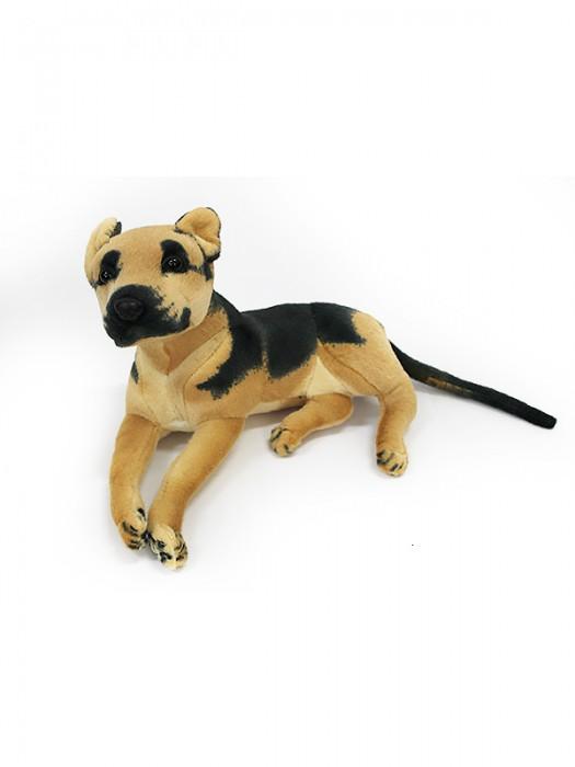 Собака GC39S
