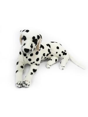 Собака GC46D