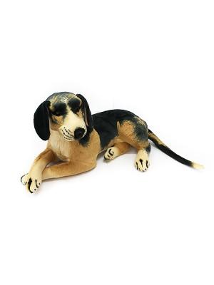 Собака GC68B