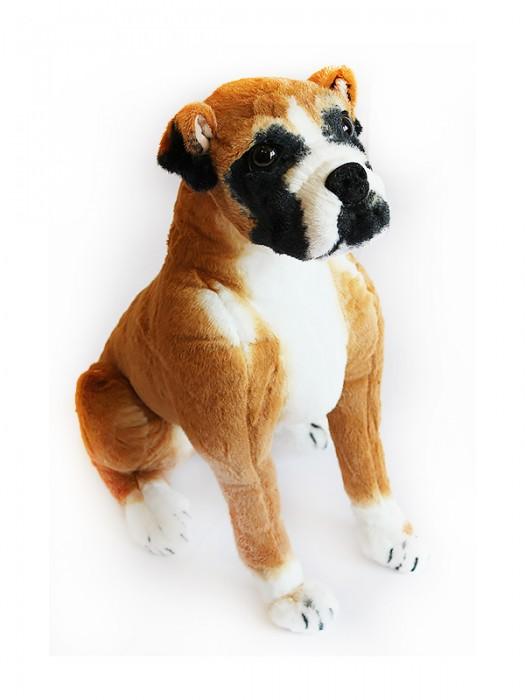 Собака GD68BX