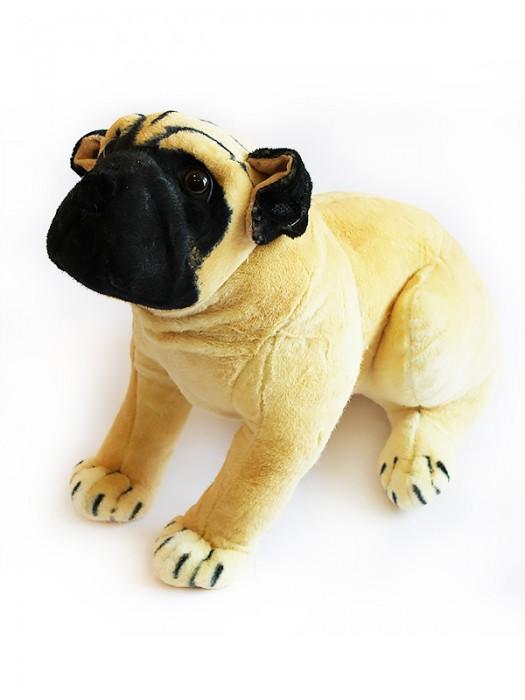 Собака GD68PG
