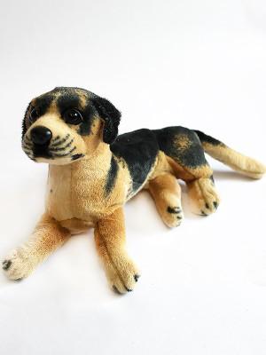 Собака GC32B
