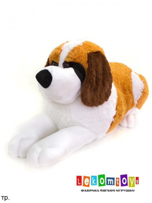 Собака Джулия